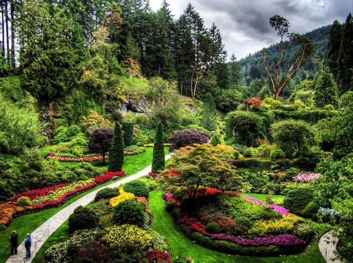 باغ گیاه شناسی یو بی اس کانادا,اماکن دیدنی کانادا,ویزای تضمینی کانادا,ویزای مولتی 5 ساله کانادا,گل و گیاه در کانادا,وقت سفارت کانادا