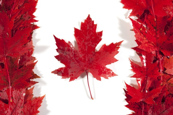 آموزش و پروش کانادا,سفر به کانادا,ویزای تضمینی,ویزای تضمینی کانادا,شرایط زندگی در کانادا,ویزای مولتی 5 ساله کانادا