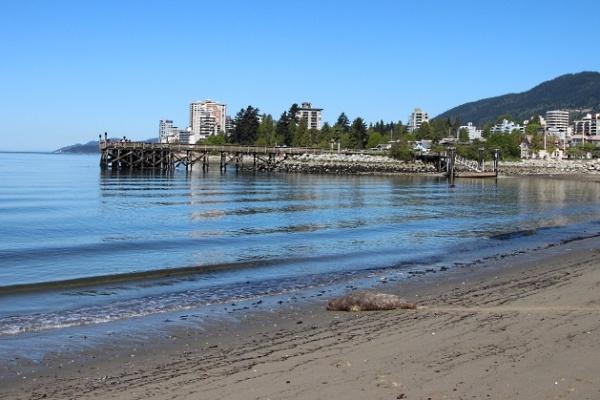 پارک امبلساید کانادا,مکان های دیدنی کانادا,ویزای تضمینی کانادا,ویزای مولتی پنج ساله کانادا,سفر به کانادا,وقت سفارت کانادا,بیومتریک کانادا